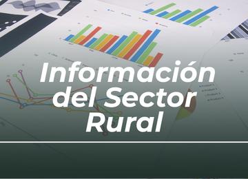 Información del sector rural
