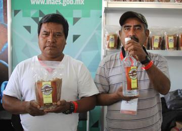 Producción de mezcal en Oaxaca