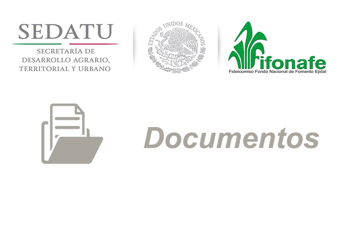 Programa Anual De Disposici N Final De Bienes Muebles Fifonafe  # Muebles Fomento