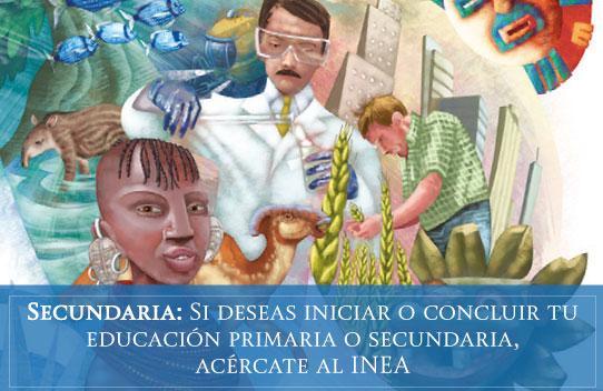 Educación Primaria y Secundaria INEA