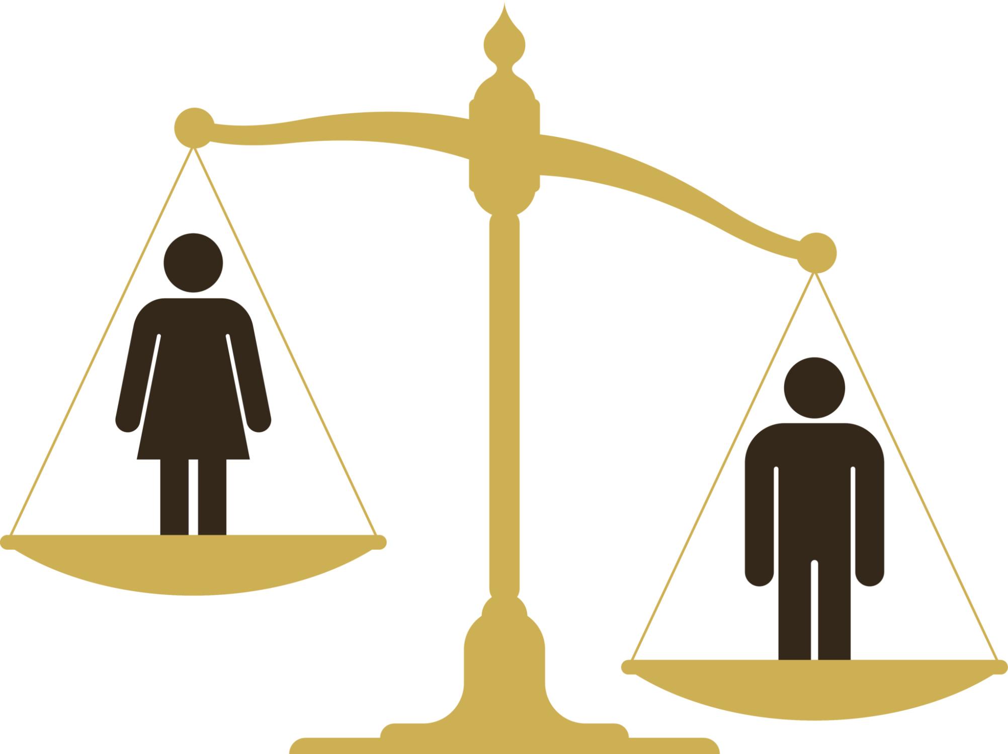 La Ley de Acceso definió por primera vez los tipos de violencia, psicológica, física, económica, patrimonial y sexual, para dejar claro que la violencia no necesariamente produce lesiones físicas.