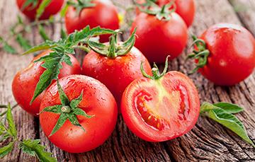 Boletín mensual de avance de la producción de tomate rojo (jitomate)