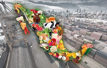 Volumen mensual exportado de productos agroalimentarios