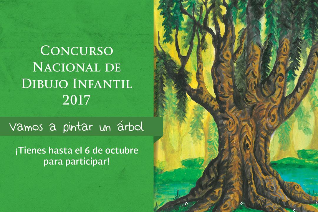 Concurso nacional de dibujo infantil 2017 vamos a pintar un árbol