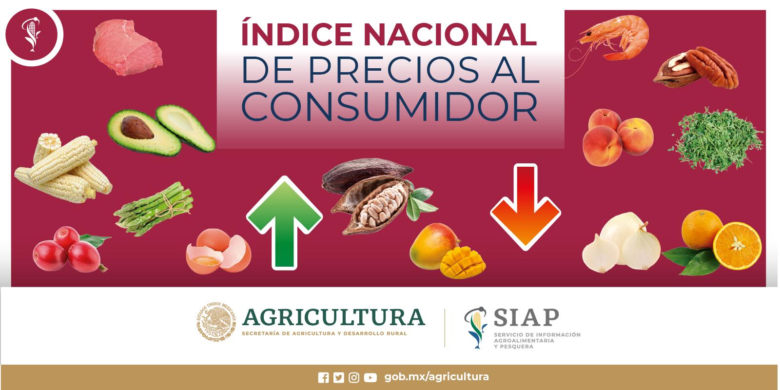 Índice Nacional de Precios al Consumidor (INPC)