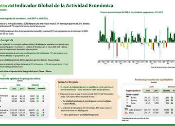 (IGAE) Indicador Global de la Actividad Económica