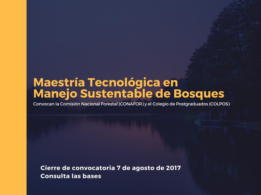 Maestr a tecnol gica en manejo sustentable de bosques for Manejo de viveros forestales