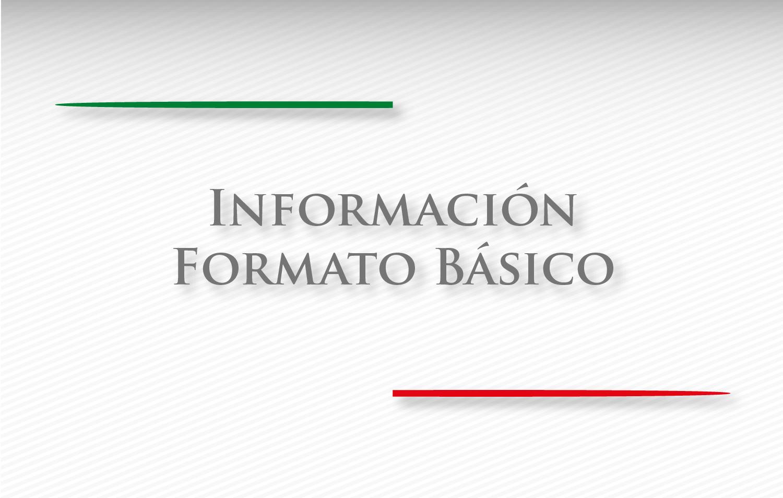 Información Formato Básico