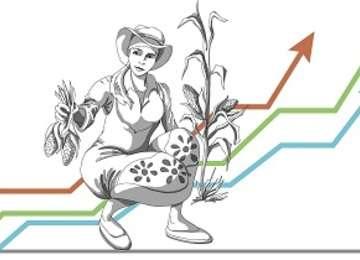 Información Estadística Agrícola de Género