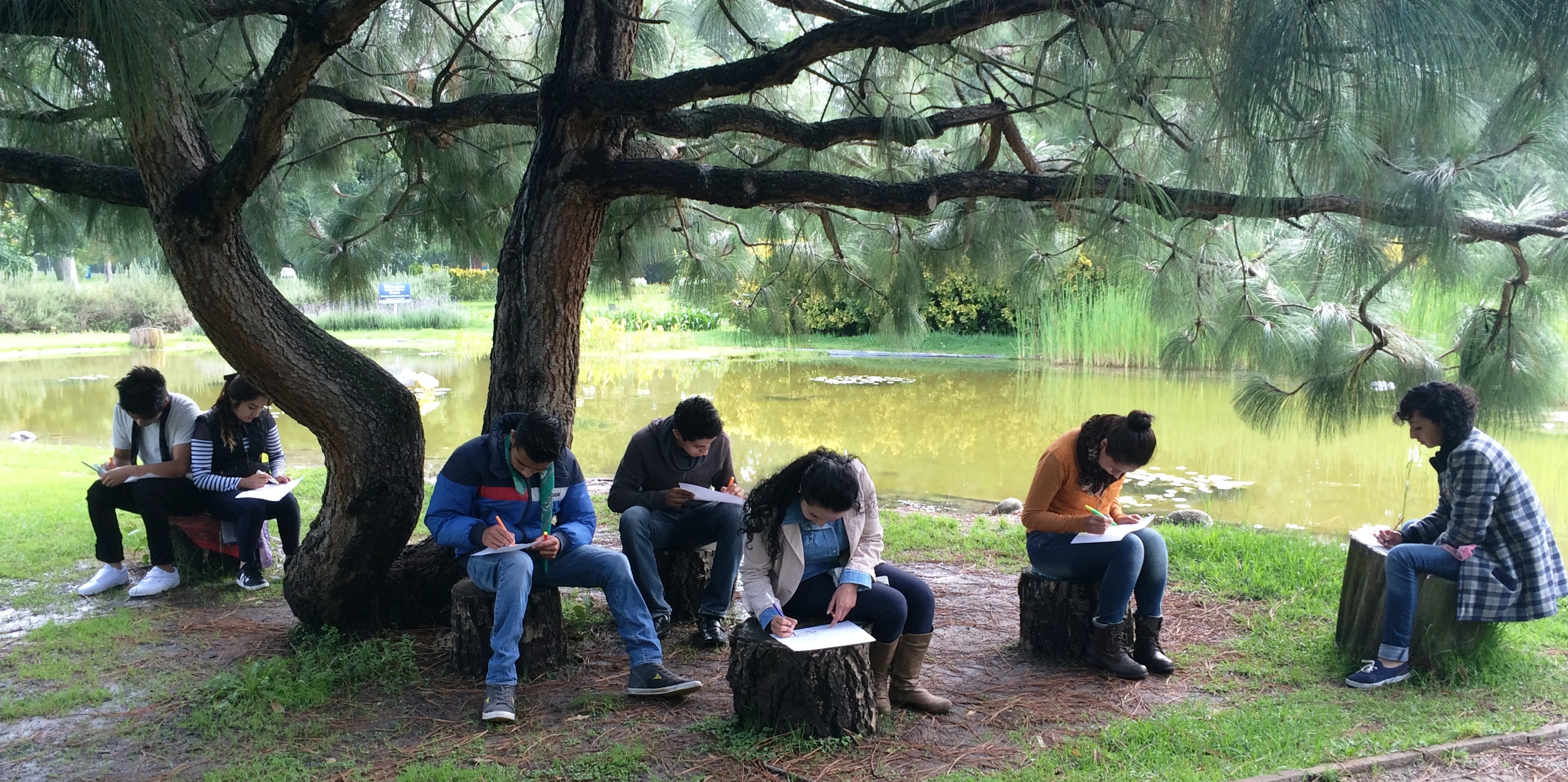 Centros de Educación y Cultura Ambiental admitidos