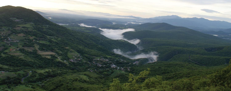 Plan de Acción para las Áreas Naturales Protegidas de la Región Centro y Eje Neovolcánico.