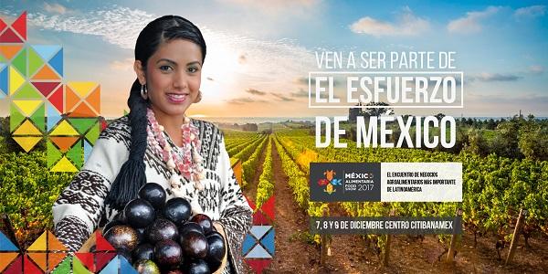 Misión comercial México Alimentaria
