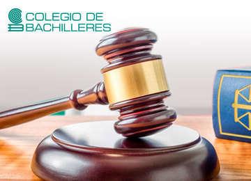 Imagen de Libros plantel y personal del OIC