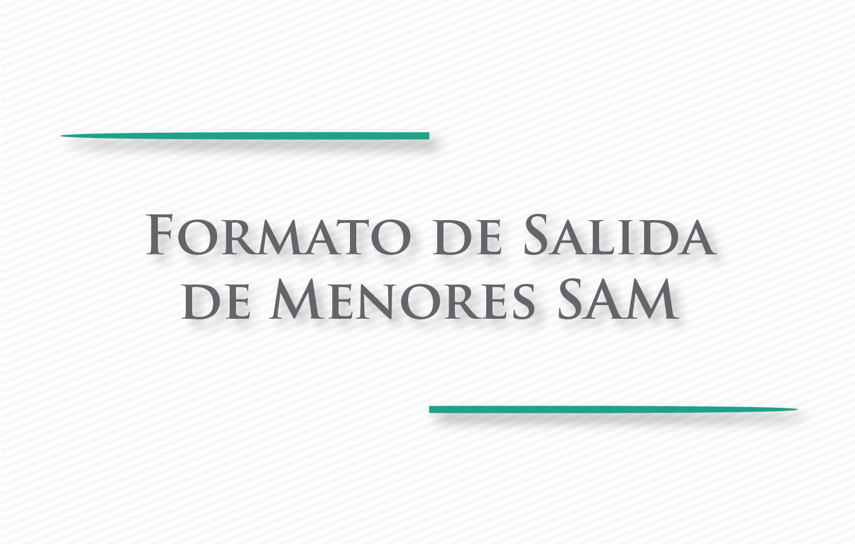 Cartel Informativo Formato de Salida de Menores SAM ...