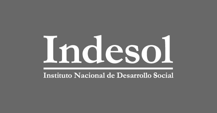 Conoce la edición especial de nuestra gaceta Conecta Indesol