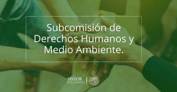 Subcomisión de Derechos Humanos y Medio Ambiente.