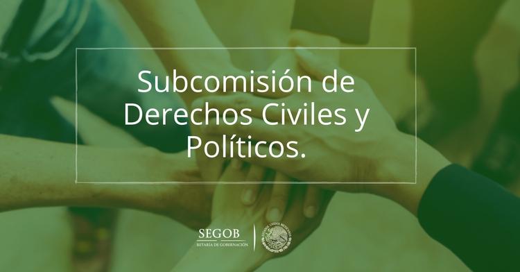 Subcomisión de Derechos Civiles y Políticos.