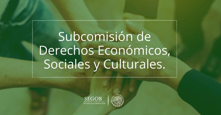 Subcomisión de Derechos Económicos, Sociales y Culturales.