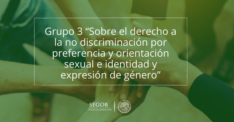 """Grupo 3 """"Sobre el derecho a la no discriminación por preferencia y orientación sexual e identidad y expresión de género"""""""