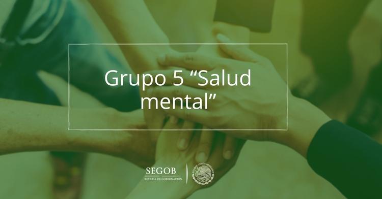 """Grupo 5 """"Salud mental"""""""