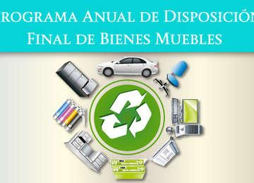 Programa anual