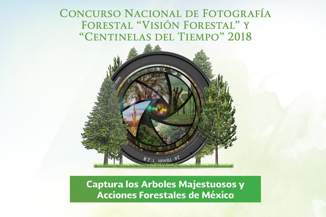 """Concurso Nacional de Fotografía Forestal """"Visión forestal y Centinelas del Tiempo 2018"""""""