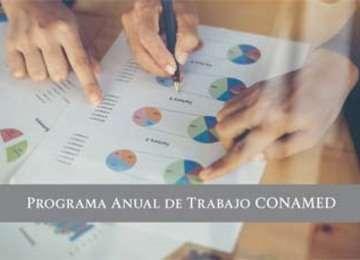 Programa Anual de Trabajo 2018