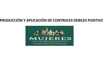 CURSO DE PRODUCCIÓN Y APLICACIÓN  DE CONTROLES DÉBILES POSITIVOS 2019