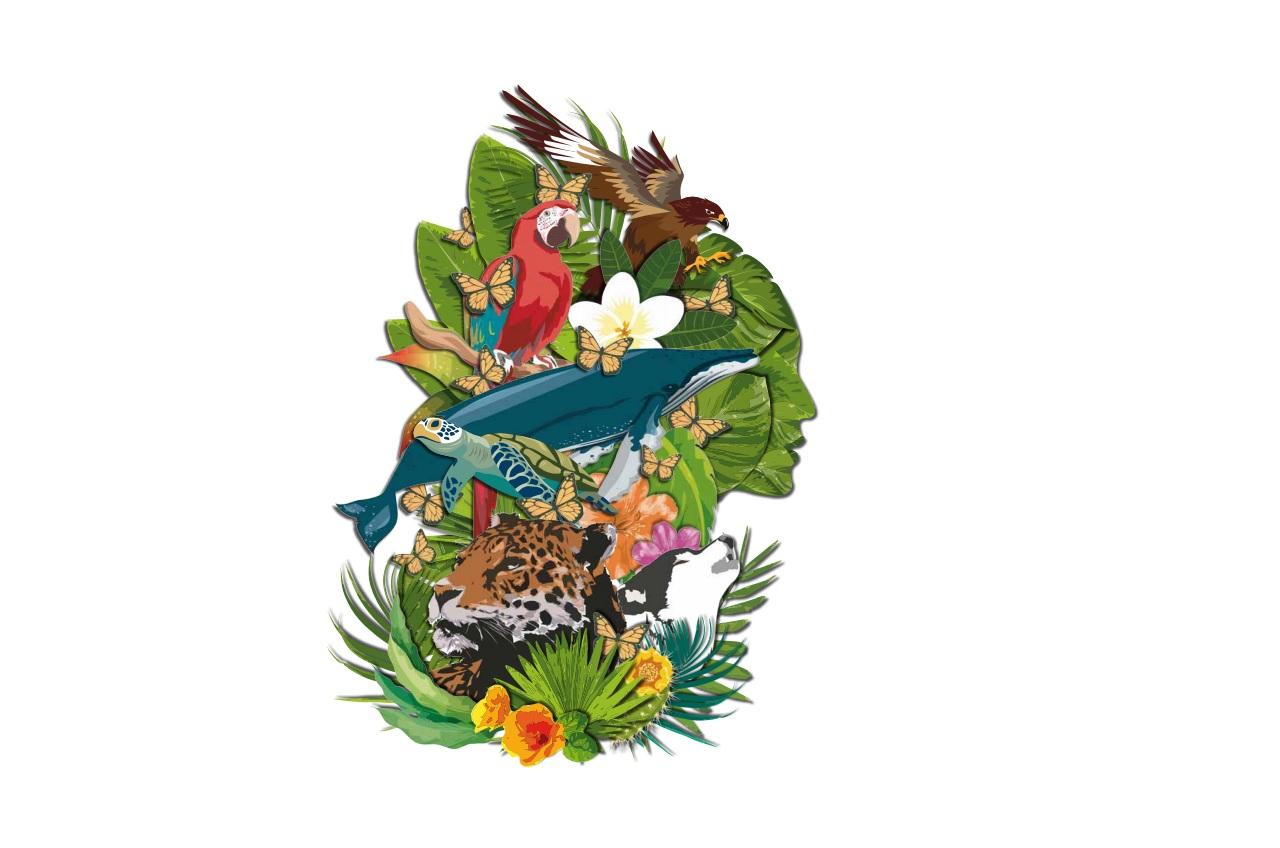 Reconocimiento a la Conservación de la Naturaleza 2018