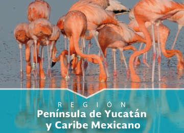 Región Península de Yucatán y Caribe Mexicano