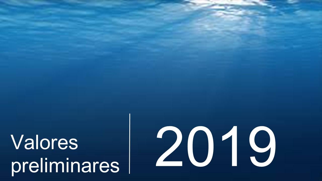 Imagen dentro del mar con la leyenda Valores preliminares 2019.