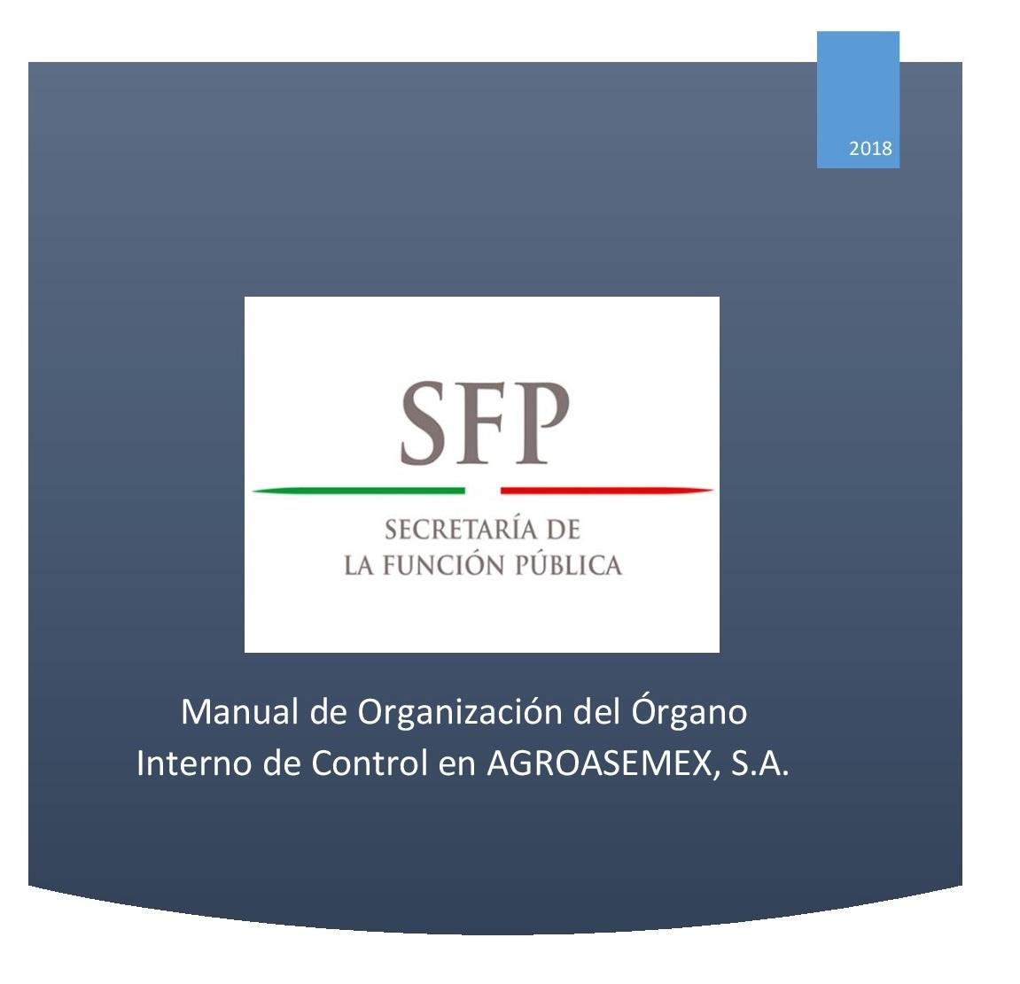 manual de organizacion del organo interno de control