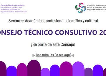 Banner sobre la Convocatoria 2018 para formar parte Consejo Técnico Consultivo.