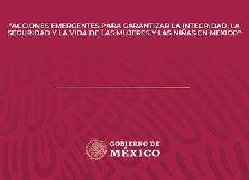 Acciones Emergentes para Garantizar la Integridad, la Seguridad y la Vida de las Mujeres y Niñas en México