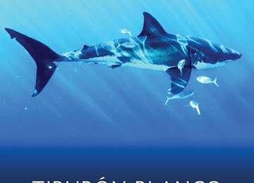 Portada del PACE Tiburón Blanco (Carcharodon carcharias)