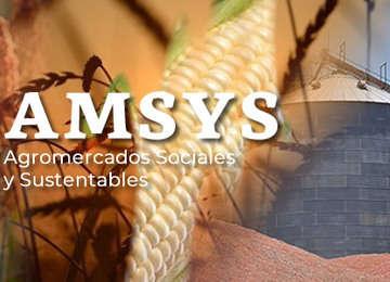 AMSYS