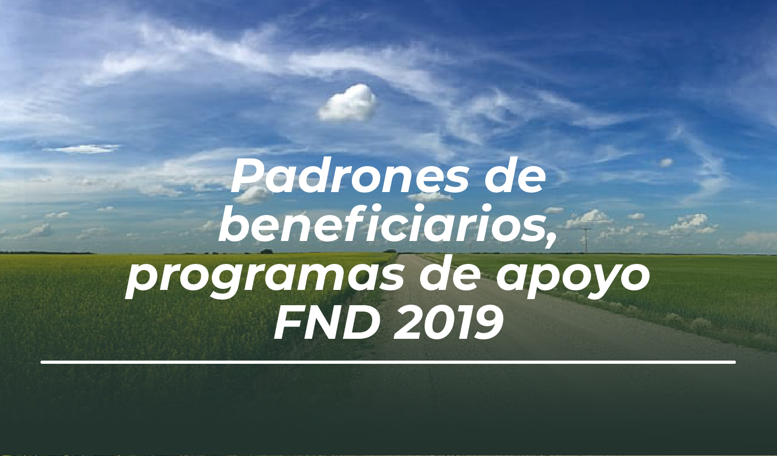 Padrones de beneficiarios