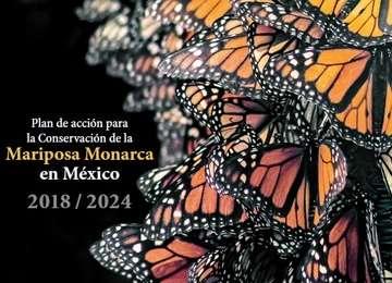 Plan de acción para la Conservación de la Mariposa Monarca en México 2018-2024