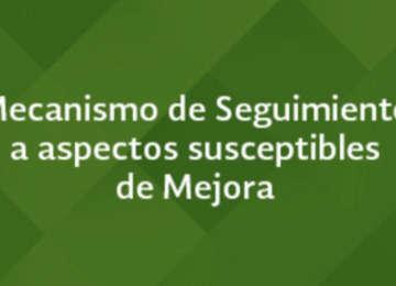Mecanismo de Seguimiento a Aspectos Susceptibles de Mejora 2018 - 2019