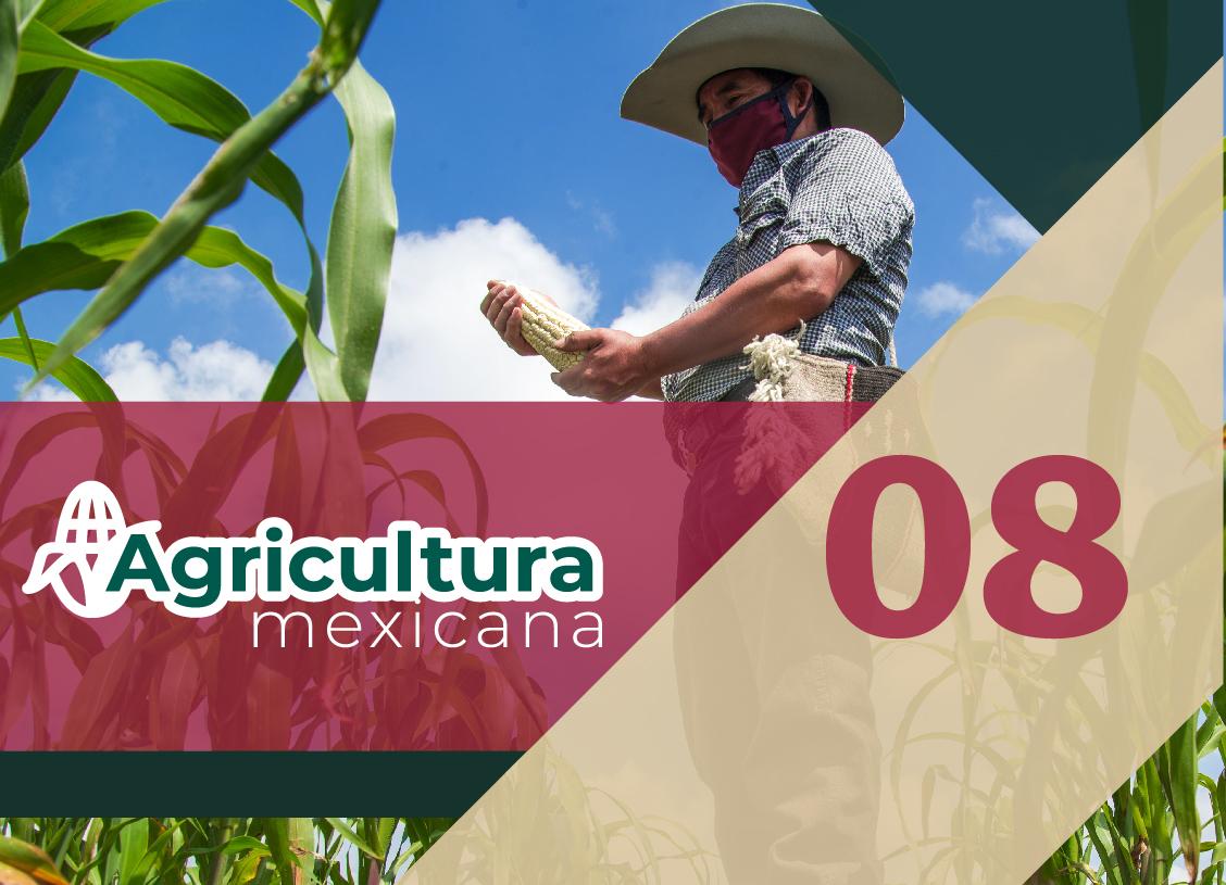 #AgriculturaMexicana