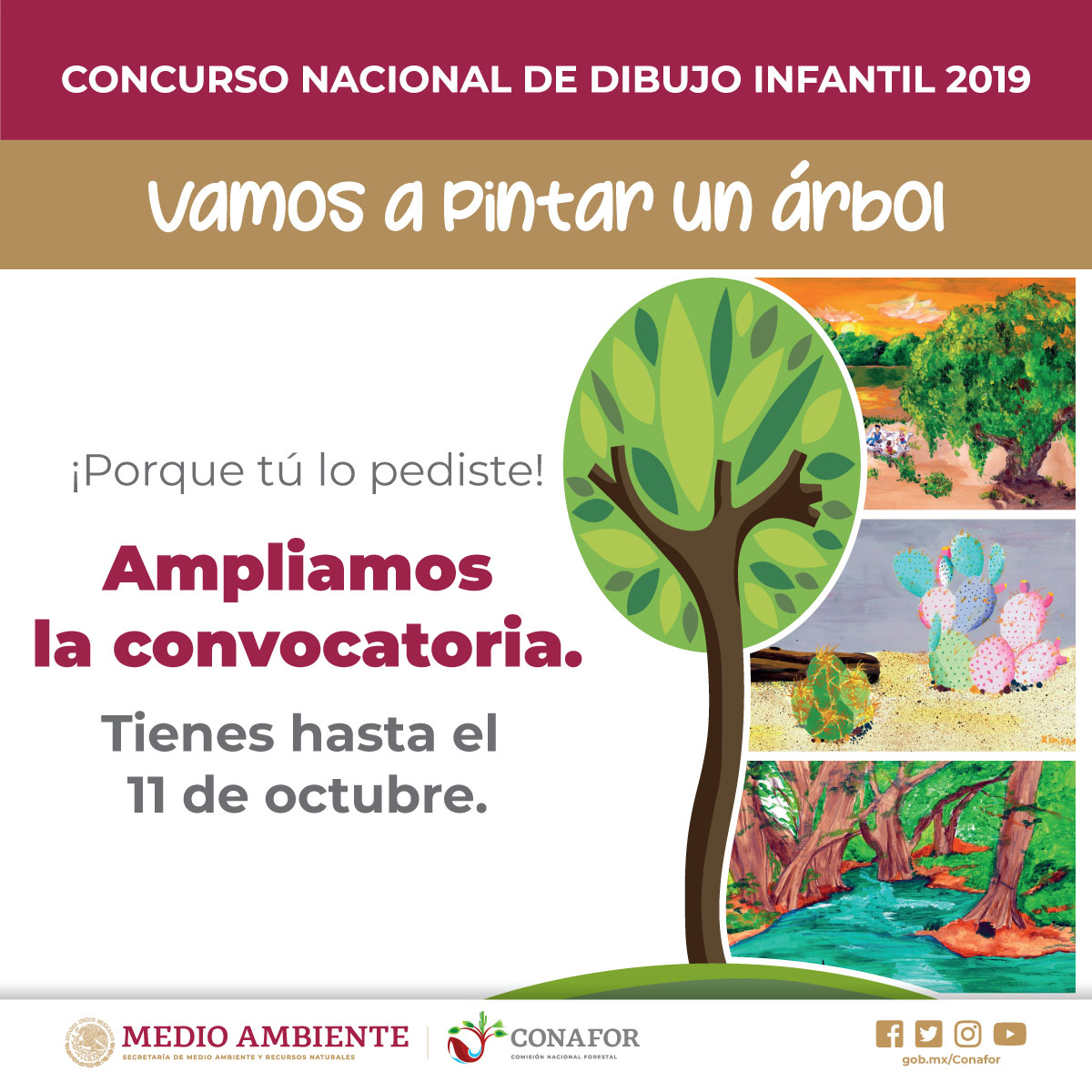 Concurso Nacional de Dibujo Infantil 2019