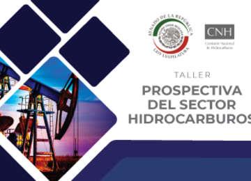 Taller Prospectiva del Sector Hidrocarburos