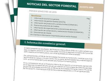 Conoce las actividades más importantes del sector forestal.