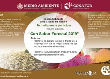 Convocatoria Con Sabor Forestal 2019