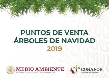 El consumo de árboles de Navidad naturales de productores mexicanos incentiva la economía rural y proporciona beneficios ambientales.