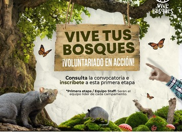 Convocatoria para la primera etapa de Vive Tus Bosques