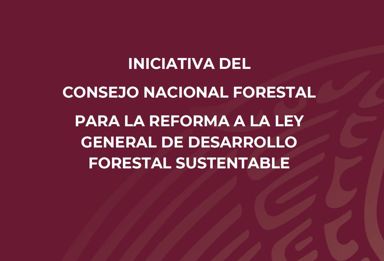 El Consejo Nacional Forestal presentó la iniciativa de reforma ante la Comisión de Medio Ambiente, Sustentabilidad, Cambio Climático y Recursos Naturales de la Cámara de Diputados.