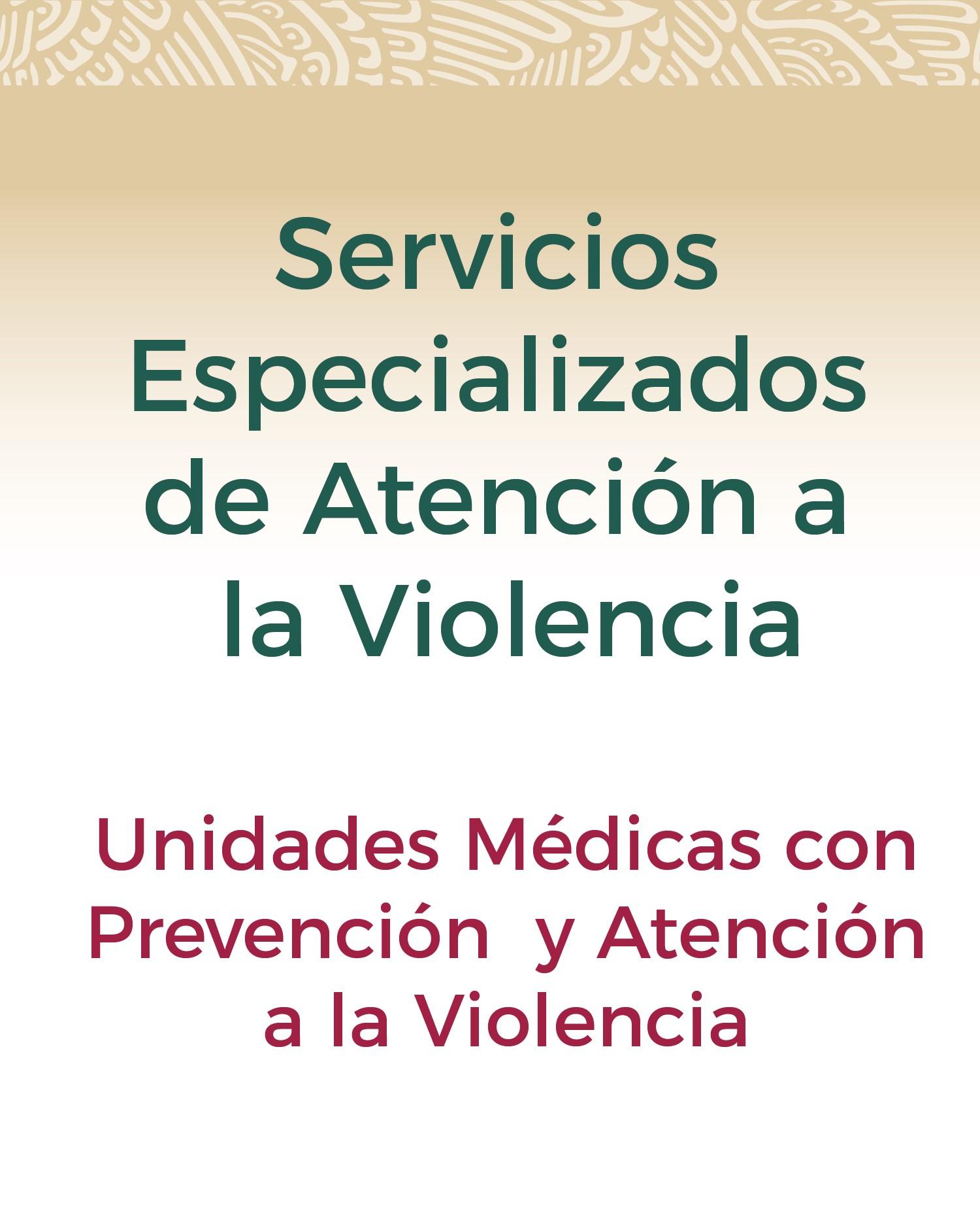 Servicios Especializados de Atención a la Violencia