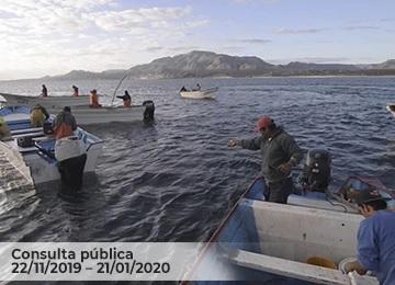 El propósito de la NOM es promover la conservación, preservación e inducir al aprovechamiento sustentable de las poblaciones de flora y fauna acuáticas de las aguas de jurisdicción federal.