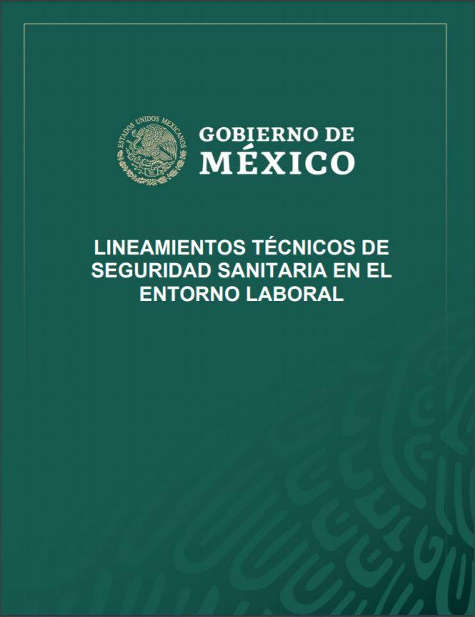 LINEAMIENTOS TÉCNICOS DE SEGURIDAD SANITARIA EN EL ENTORNO LABORAL